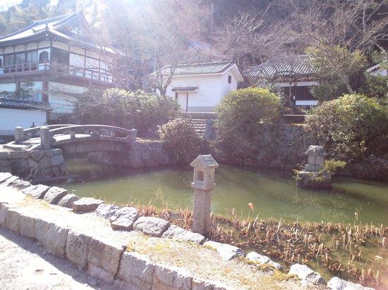 Yatadera Temple: 石橋と池