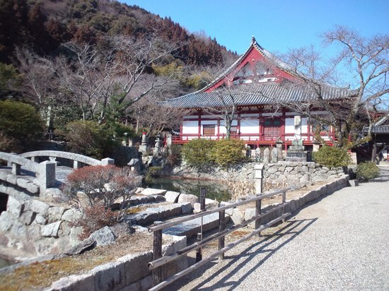 Yatadera Temple: 本堂
