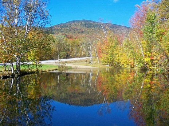 Lost River Valley Campground: Pond and beach area