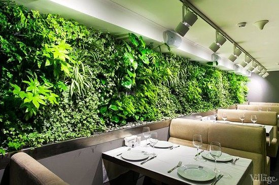 Green Wall In The Restaurant Hall Picture Of Den Amp Bros