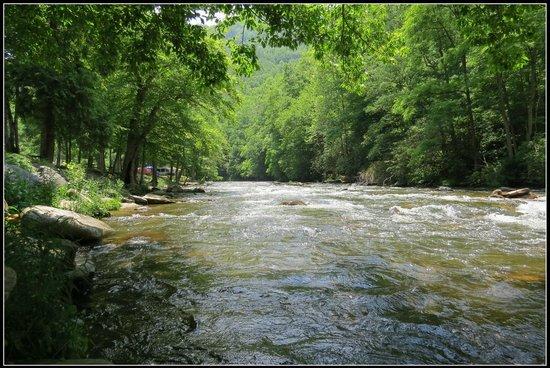 River Valley RV Park & Campground: Raven Fork River that flows thru the campground