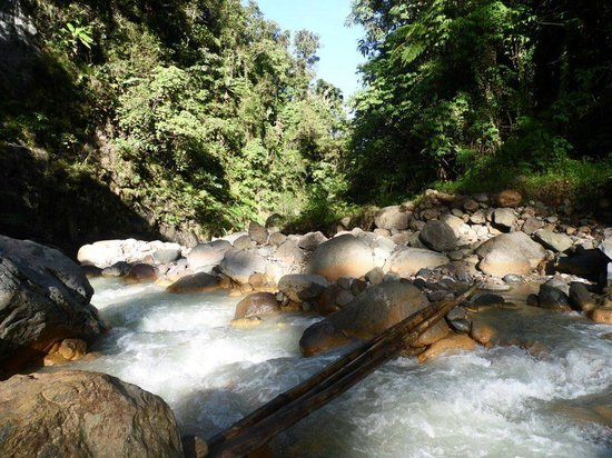 Mount Apo: This is the easiest part of the river that I had to cross 12 times!
