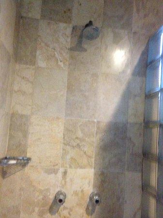 Hotel Palm Garden: 固定シャワー