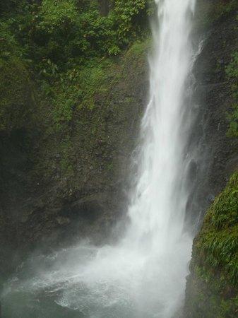 Middleham Falls & Ti Tou Gorge : Middleham Falls