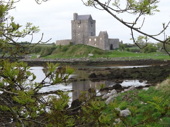 Кинвара, Ирландия: The view from Kinvara town walking to Dunguaire Castle.