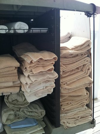InnSeason Resorts Surfside: Old, thin, ragged bath towels