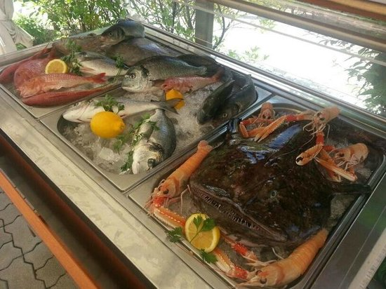 Cantina Verde: FISH OF THE DAY