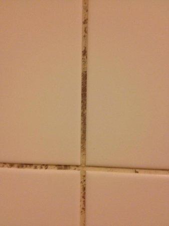 Hotel Lautrup Park: Detalje dusjen