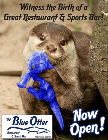 The Blue Otter Restaurant and Sports Bar: Come watch all your favorite sports!