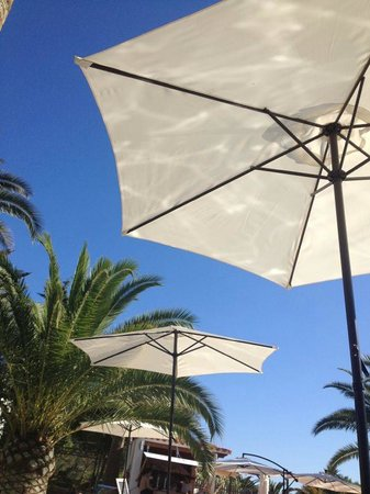 Cocomotion Apartaments : La piscina del hotel