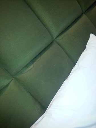 Executive Rooms London Kensington: stains