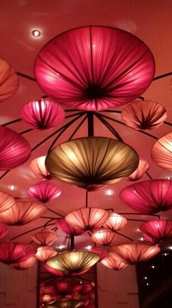 Royal Orchid: Lovely ceiling lanterns