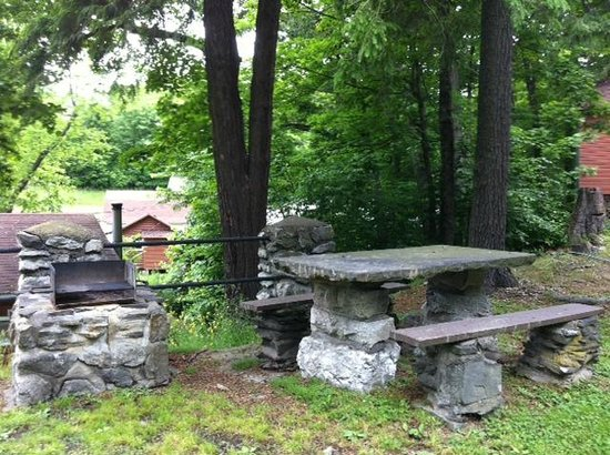 Carl's Rip Van Winkle Motor Lodge : Picnic area with a grill