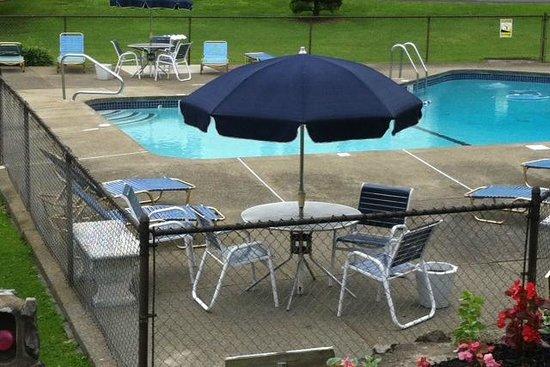 Carl's Rip Van Winkle Motor Lodge: The pool