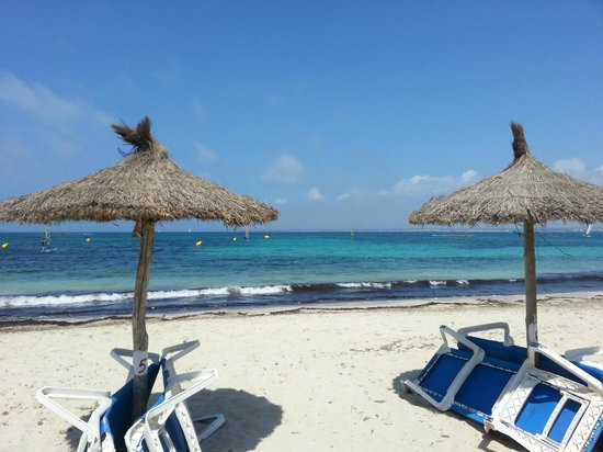 Universal Hotel Marques : Strand in der Nähe des Hotels