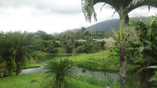 Arenal Manoa Hotel: The grounds of the hotel