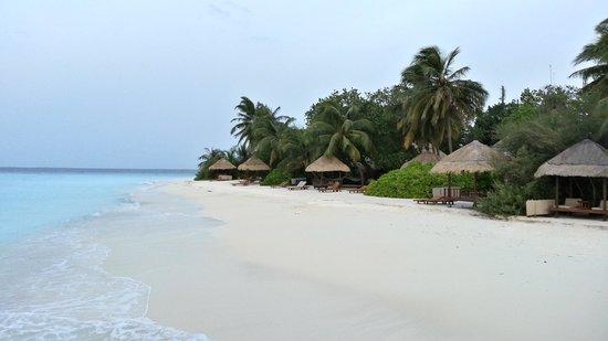 Banyan Tree Vabbinfaru: Island view