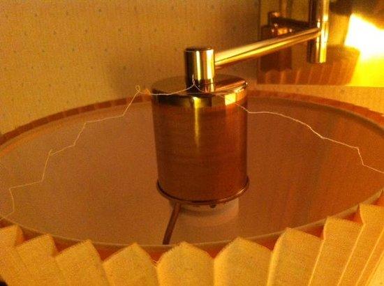 Rodeway Inn & Suites Myerstown - Lebanon: lampshade fraying
