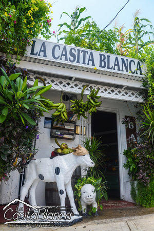 La Casita Blanca, Puerto Rico's most authentic flavors served at your table for over 30 years.