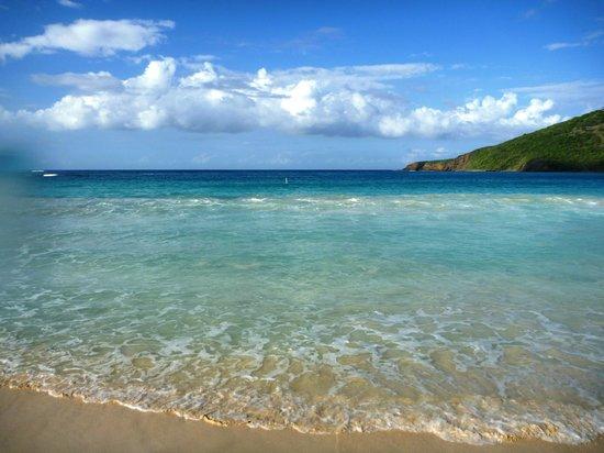 Culebra Beach Villas: Topaz says I