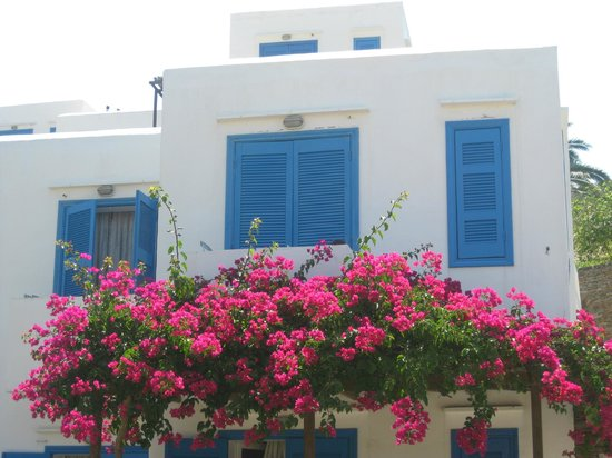 Alexandros Hotel: love the white and blue......so greek!