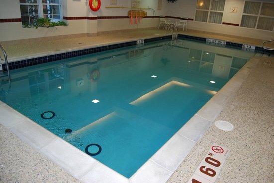 Residence Inn Toronto Markham : Pool