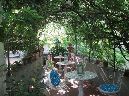 Locanda Sant'Agostino Maison de Charme : The charming leafy terrace