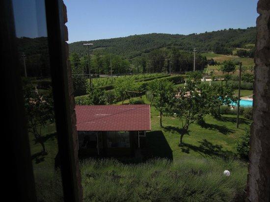 Crocina - Piombaia: Utsikt från köket. Uteserveringen och poolen syns.