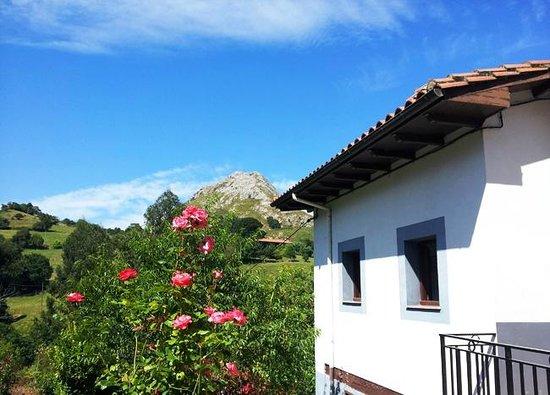Casa Rural San Juan: Vistas
