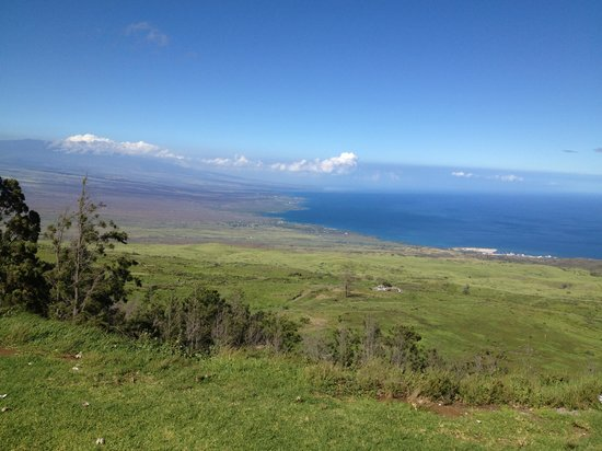 Kohala Mountain Road: Purtty stuff