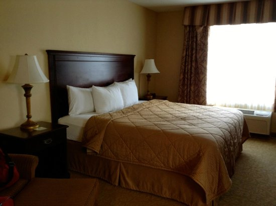 Comfort Inn & Suites McMinnville: King bed