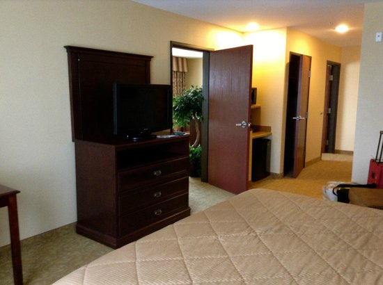 Comfort Inn & Suites McMinnville: View of the room