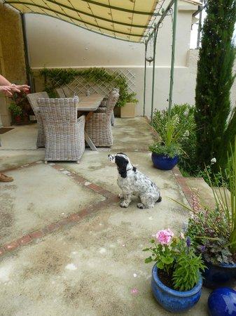 Maison Laurent: Bella by back patio off house