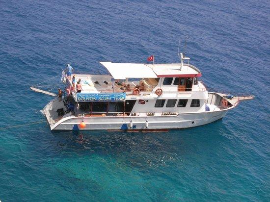 Dolphin Scuba Team
