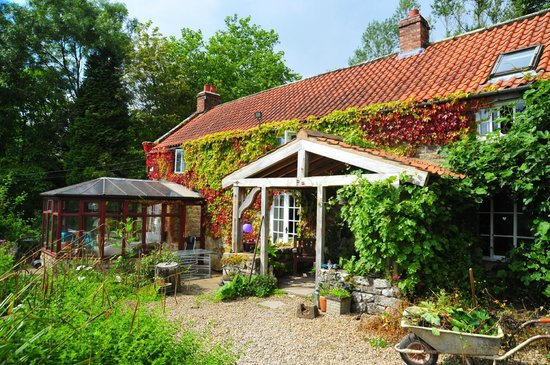 Carr House Farm Bed and Breakfast: Typical English Farm house complete with creepers on walls