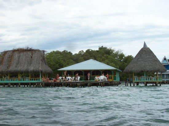 Selva Verde Lodge: Mangrove gebied Panama