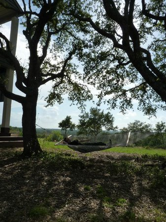 Sage Hill Inn Above Onion Creek: Hammock on property....