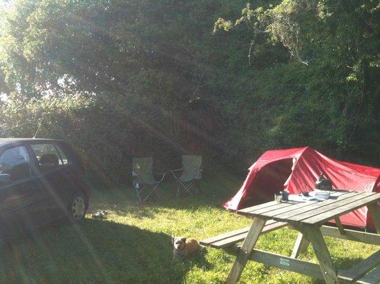 Corofin Hostel and Camping Park: Camp Site at Corofin Hostel