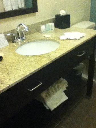 Sleep Inn & Suites N Austin: Bathroom