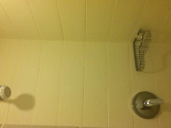 Sleep Inn & Suites: Shower