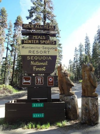 Montecito Sequoia Lodge & Summer Family Camp: The entrance