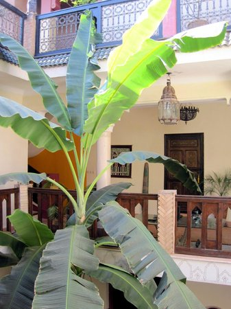 Riad Nomades : Primer piso