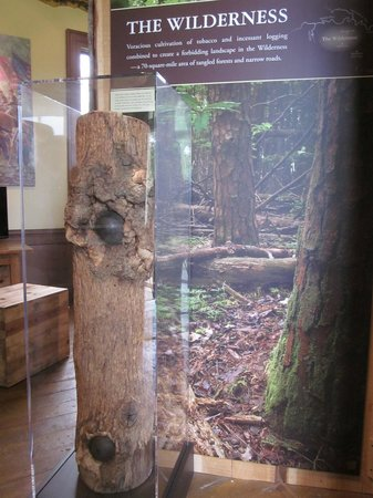Grave of Stonewall Jackson's Arm: A partial tree displayed from the Wilderness battle.