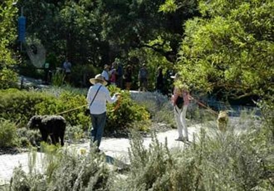 Santa Barbara Botanic Garden - 2018 All You Need to Know Before You ...