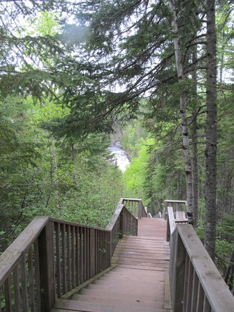 Judge C.R. Magney State Park: Yes, there are lots of stairs!