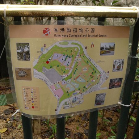 Map Of The Grounds Picture Of Hong Kong Zoological And Botanical Gardens Hong Kong Tripadvisor