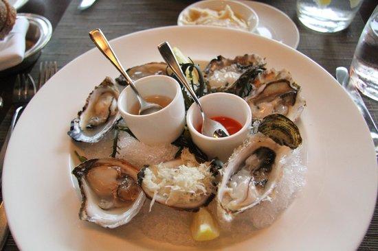 My oyster starter