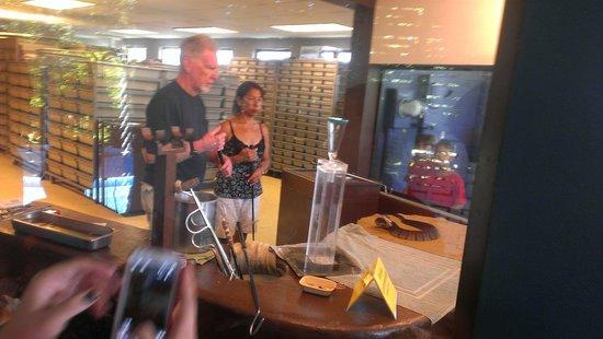 Reptile World Serpentarium: Venom extraction viewing area