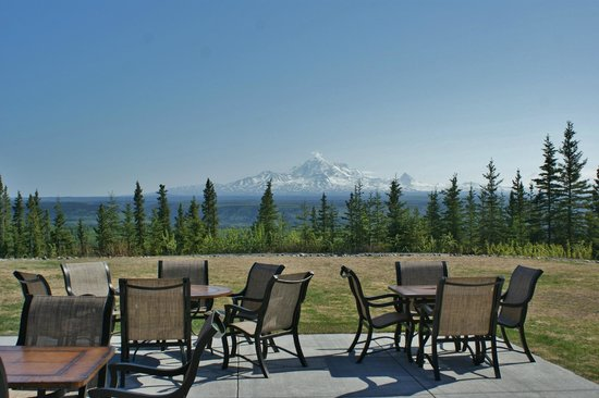 Copper River Princess Wilderness Lodge: Hotel and dining view