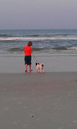 Beachers Lodge: Dogs allowed on the beach!!